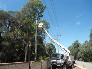 Power-line Clearance service