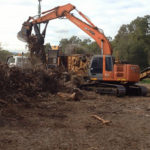 Vegetation Management Service